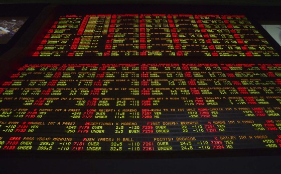 New Jersey Takes a Gamble on Sports Betting